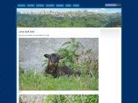 diehirtin.ch