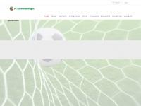fcschwamendingen.ch