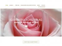 forster-blumen.ch
