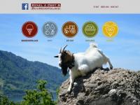 gantlihof.ch