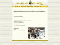 gefluegelhof-gisi.ch