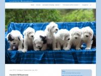 pennylane.ch