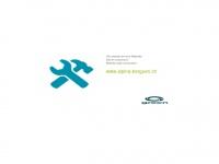 alpina-berguen.ch
