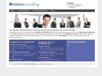 widmerconsulting.ch