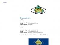 imboden-elektro.ch