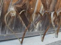 imbachfischbach.ch