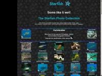 starfish.ch