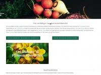 mueller-steinmaur.ch