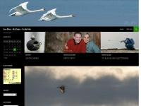 kuenzis.ch