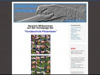 leonberger-vom-treuen-wesen.ch
