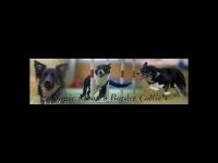 magic-moon.ch
