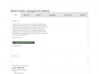 meister-sanitaer.ch