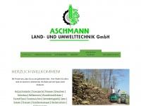 aschmann-gmbh.ch