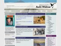 aschiwidmer.ch