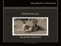 my-photo-collection.ch