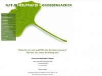naturheilpraxis-grossenbacher.ch