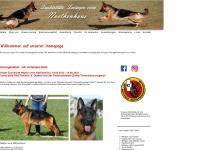 noethenhaus.ch