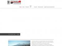 fritscheag.ch