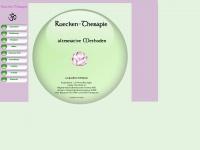 ruecken-therapie.ch
