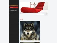 saarloos-wolfhond.ch