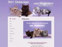 stubentiger.ch