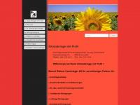 rohner-kaminfeger.ch