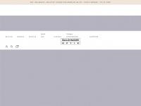 baldinger-optik.ch
