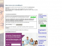 swz-consulting.ch
