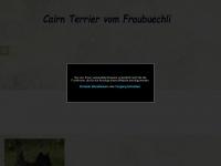 terrier-cairn.ch