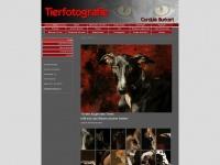 tierfotografin.ch
