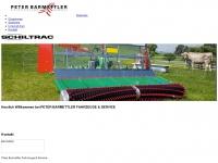 barmettler.ch