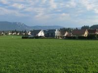 bauen-online.ch