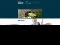 Wohlfuehl-oase.ch