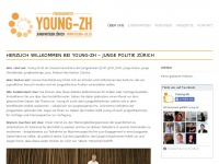young-zh.ch