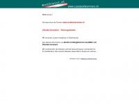 zusatzeinkommen.ch