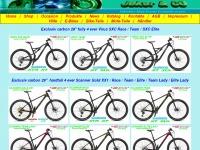 4ever-bike.ch