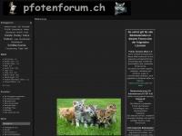 pfotenforum.ch