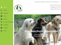hundeschule-teamgeist.ch
