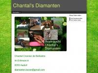 diamanten-boxer.ch