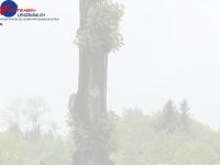 mietwagen-lenzburg.ch
