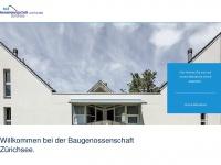 bgzuerichsee.ch