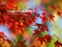 Bieser.ch
