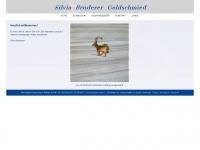 sb-goldschmied.ch