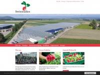 swissradies.ch