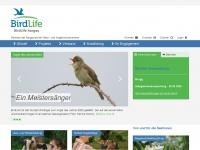 birdlife-ag.ch