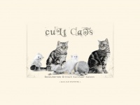 bkh-cultcats.ch