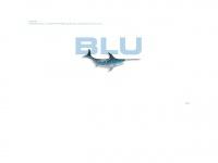 blu-agentur.ch