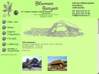 blumenberger.ch