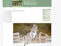 deerhunters.ch